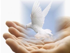 peace-in-hand