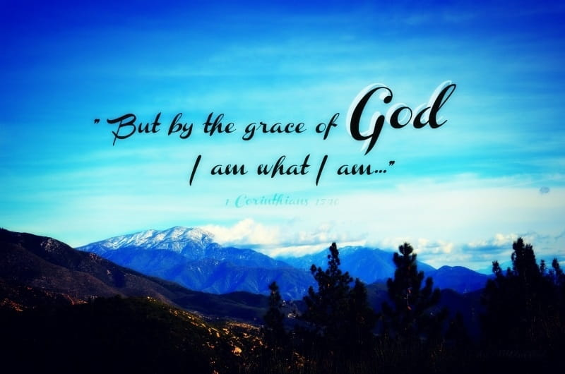 Grace is an Equalizing Gift | Wholeness/Oneness/Justice
